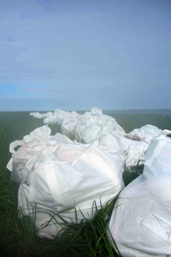 bags of plastic on a coast