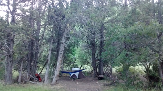 An image of a tent and hammock set up in a clearing on a trail in Bryce Canyon.
