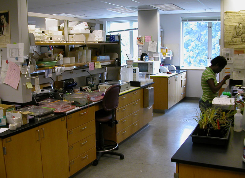 bio lab research The chemical biology laboratory (cbl) was established in 2009 as a multidisciplinary laboratory that emphasizes chemical science at the at the interfaces of chemistry, biology and materials.