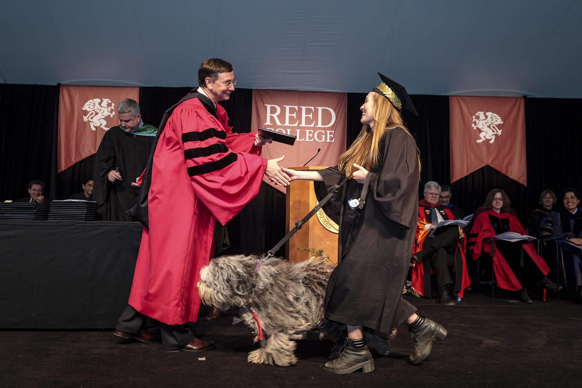 Annelise Hill '17 (environmental studies-chemistry) and shaggy companion receive diploma from Pres. John Kroger