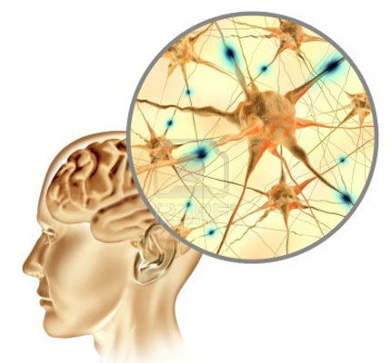 theory of human thought and sensation For most of human history, only the concepts of conscious thought and intentional behavior existed in the 1800s, two very different developments—hypnotism and evolutionary theory—both pointed to the possibility of unconscious, unintended causes of human behavior.