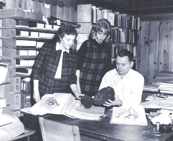 A picture of Kay Story French, Jane Shell Raymond, and David French