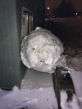 big snowball photo